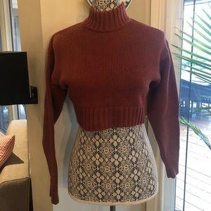 Wilfred free merino wool xs crop sweater